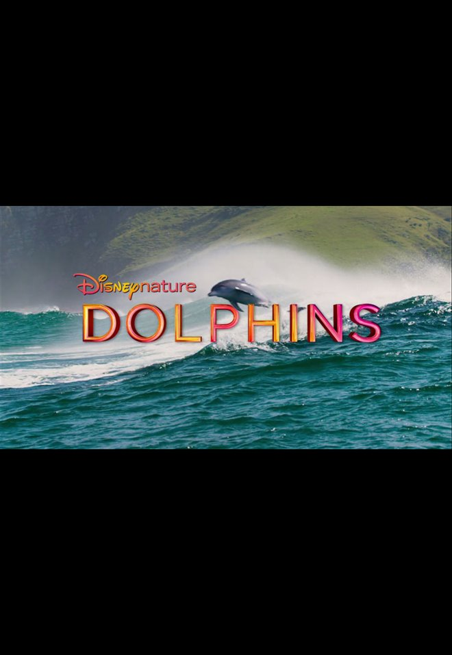 Dolphins Large Poster