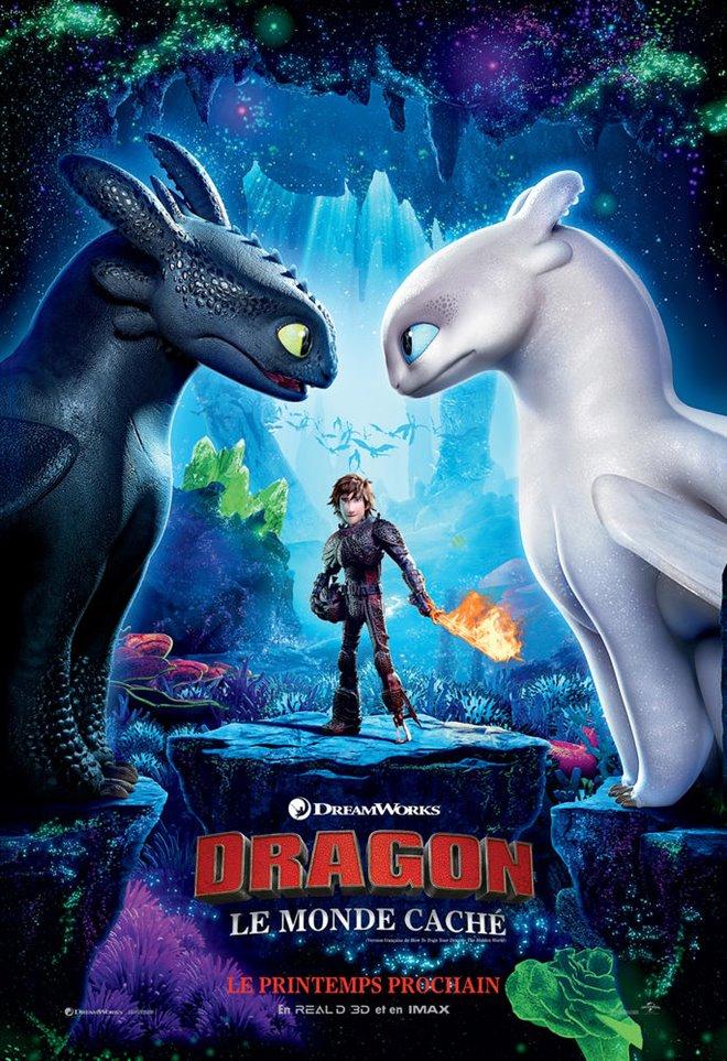 Dragons : Le monde caché Large Poster