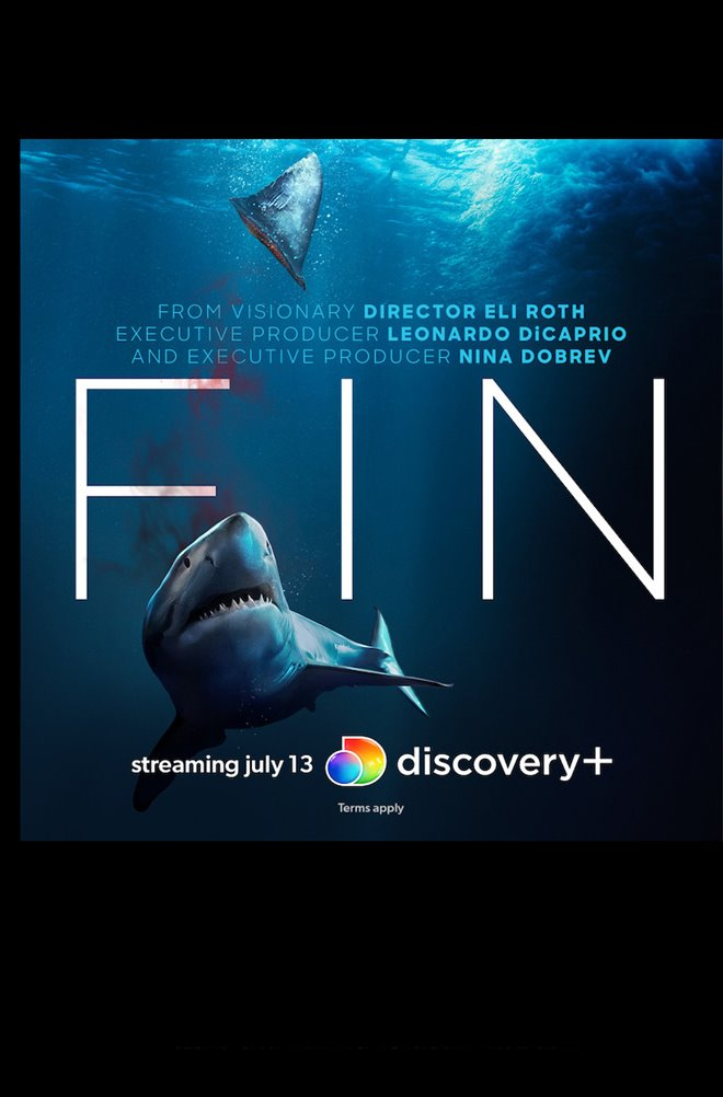 Fin Large Poster