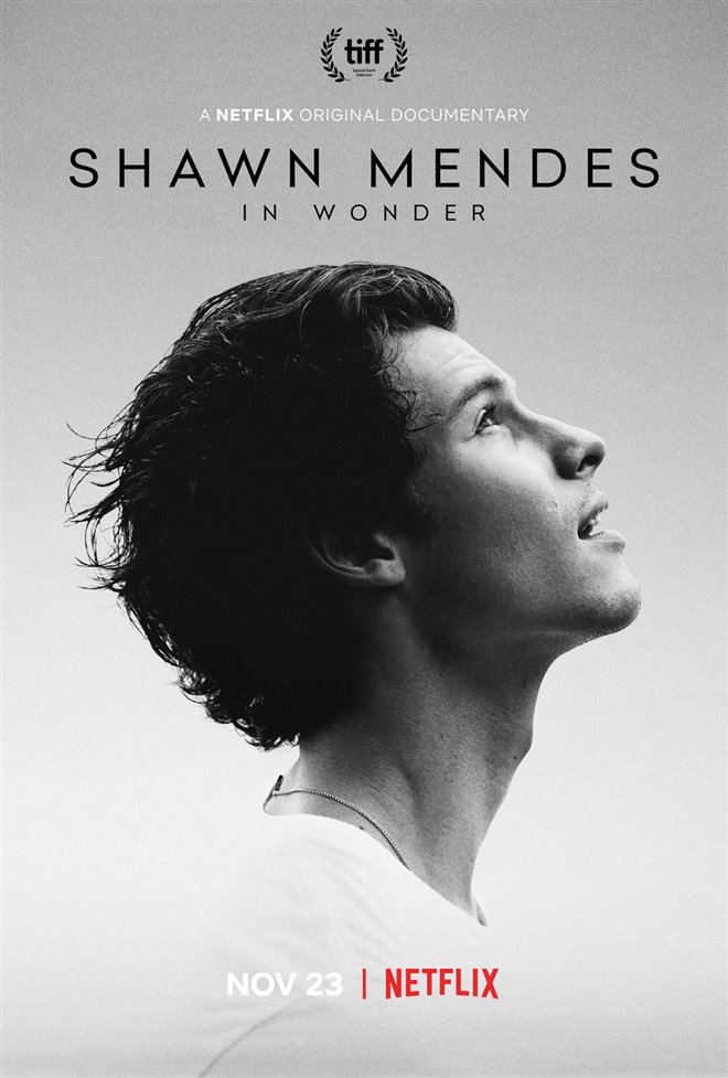Shawn Mendes: In Wonder (Netflix) Large Poster