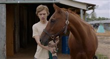 Lean on Pete - Trailer Poster