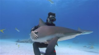 Sharkwater: Extinction