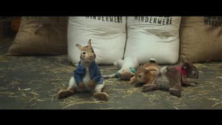 peter rabbit on dvd movie synopsis and info