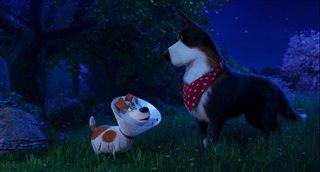 The Secret Life of Pets 2 Movie Trailer