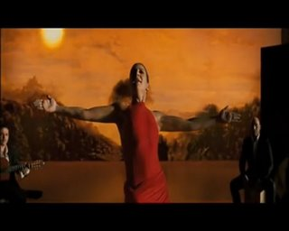 Flamenco, Flamenco Thumbnail