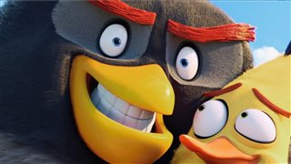 Angry Birds Digital Release Video Thumbnail