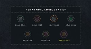 coronavirus-explained-trailer Video Thumbnail