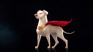 dc-league-of-super-pets-teaser-trailer Video Thumbnail