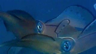 deep-blue Video Thumbnail