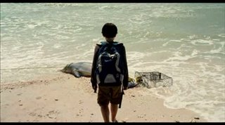 Dolphin Tale Trailer Video Thumbnail