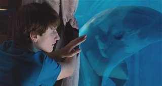 Dolphin Tale 2 Trailer Video Thumbnail