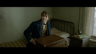 """Fantastic Beasts and Where to Find Them Movie Clip - """"Just A Smidge"""" Video Thumbnail"""
