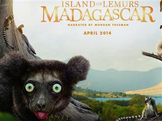 island-of-lemurs-madagascar-behind-the-scenes Video Thumbnail