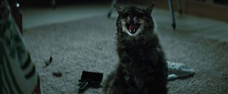 'Pet Sematary' Final Trailer Video Thumbnail