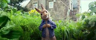 peter-rabbit-trailer Video Thumbnail