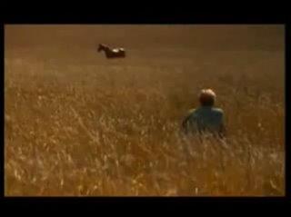 THE HORSE WHISPERER Trailer Video Thumbnail