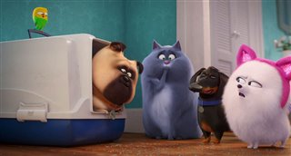 the-secret-life-of-pets-2-national-pets-day-trailer Video Thumbnail