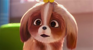 'The Secret Life of Pets 2' - The Daisy Trailer Video Thumbnail