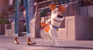 'The Secret Life of Pets 2' - The Max Trailer Video Thumbnail