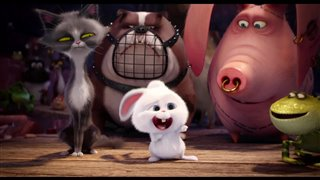"""The Secret Life of Pets movie clip - """"Snowball's Accident"""" Video Thumbnail"""