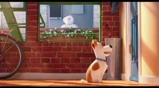 the-secret-life-of-pets-teaser Video Thumbnail