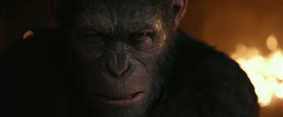 War for the Planet of the Apes - Final Trailer Video Thumbnail